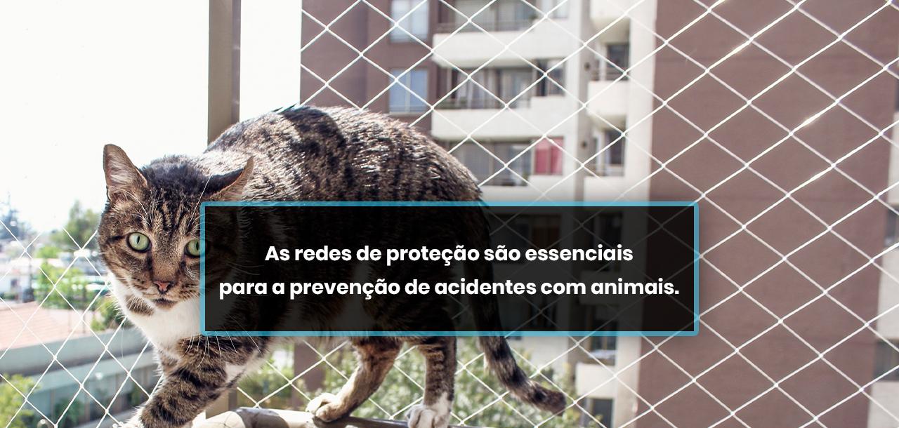 As redes de proteção são essenciais para a prevenção de acidentes com animais.